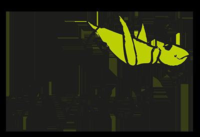 Physio3 Training Therapie Kurse
